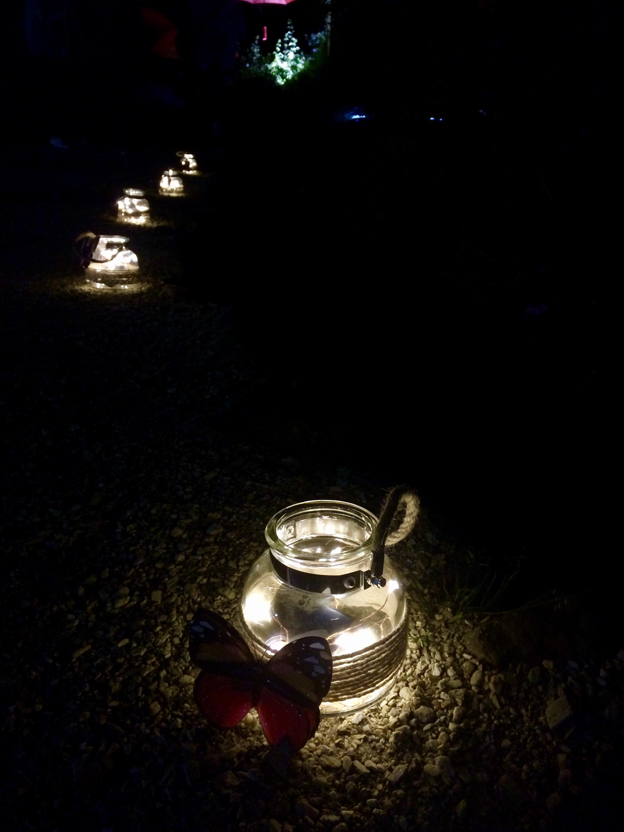 Glenfalloch Night Garden Glenfalloch