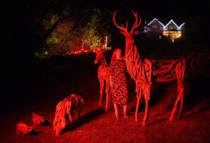 Glenfalloch Night Garden sculpture